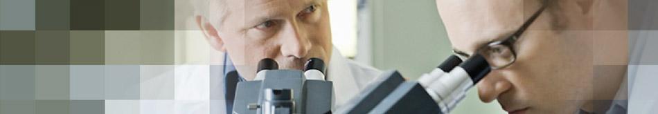 Wissenschaft und Forschung in Essen